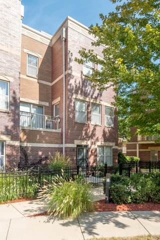 4103 S Maryland Avenue #4103, Chicago, IL 60653 (MLS #11253980) :: The Wexler Group at Keller Williams Preferred Realty