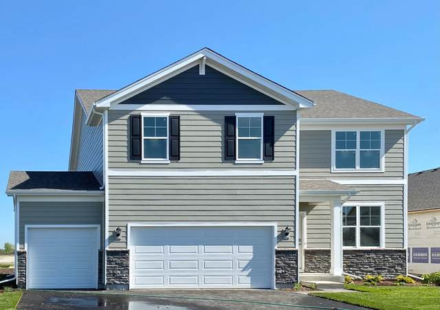 25400 W Cerena Circle, Plainfield, IL 60586 (MLS #11253983) :: Ani Real Estate
