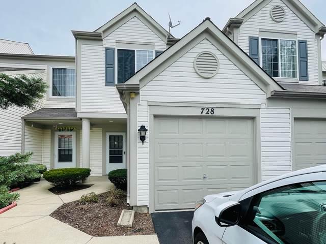 728 Blossom Court, Naperville, IL 60540 (MLS #11254075) :: Ryan Dallas Real Estate