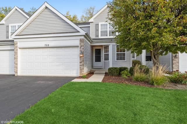 722 Savannah Lane, Crystal Lake, IL 60014 (MLS #11254116) :: Helen Oliveri Real Estate