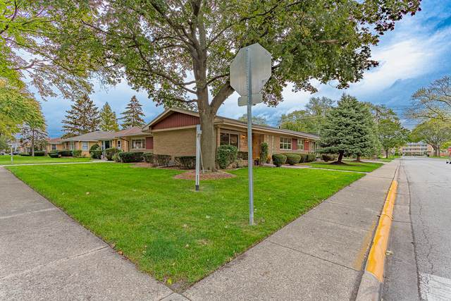 5001 N Octavia Avenue, Harwood Heights, IL 60706 (MLS #11254149) :: The Wexler Group at Keller Williams Preferred Realty
