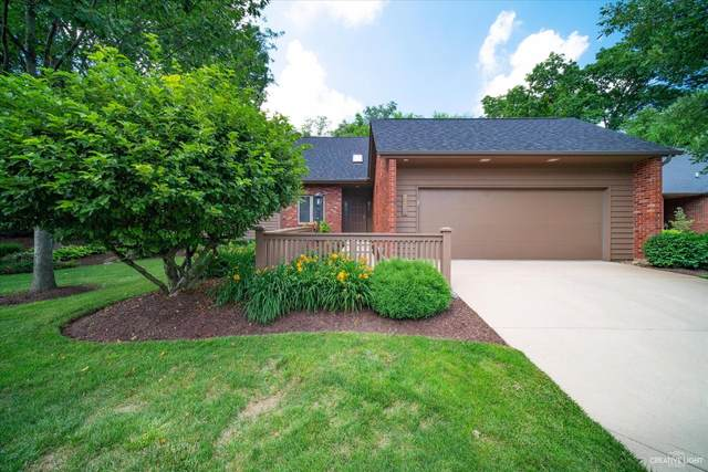 Elgin, IL 60123 :: Ani Real Estate