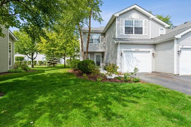 380 Maidstone Court, Schaumburg, IL 60194 (MLS #11254303) :: Ani Real Estate