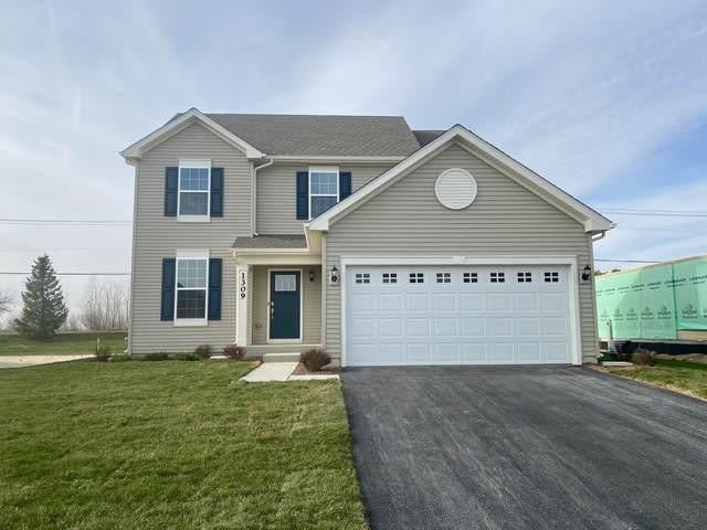 1215 Sage Circle, Joliet, IL 60431 (MLS #11254363) :: RE/MAX IMPACT
