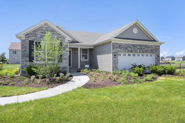 1230 Morgana Drive, Joliet, IL 60431 (MLS #11254364) :: RE/MAX IMPACT