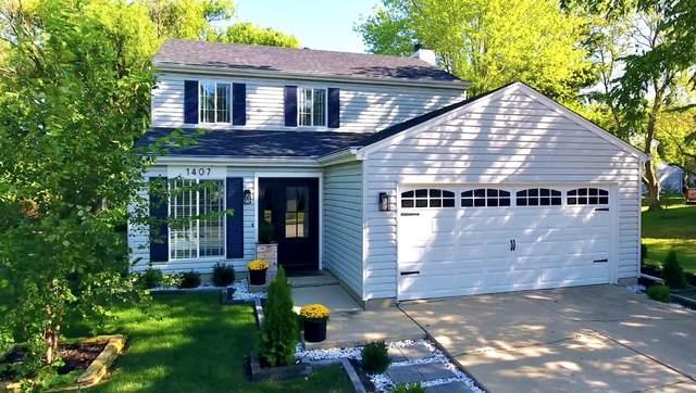 1407 Canyon Run Road, Naperville, IL 60565 (MLS #11254533) :: Ani Real Estate