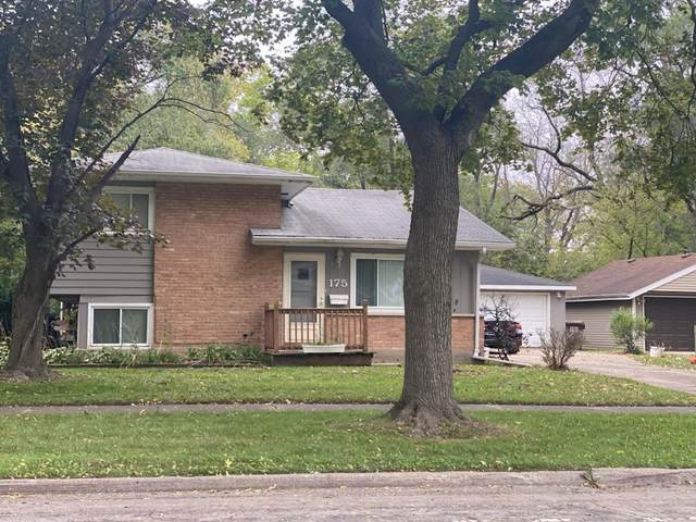 175 Westwood Drive, Park Forest, IL 60466 (MLS #11254634) :: The Wexler Group at Keller Williams Preferred Realty