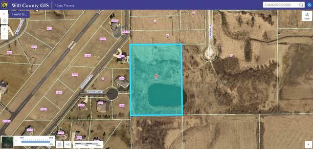 26000 S Murphy Lane, Monee, IL 60449 (MLS #11254635) :: NextHome Select Realty
