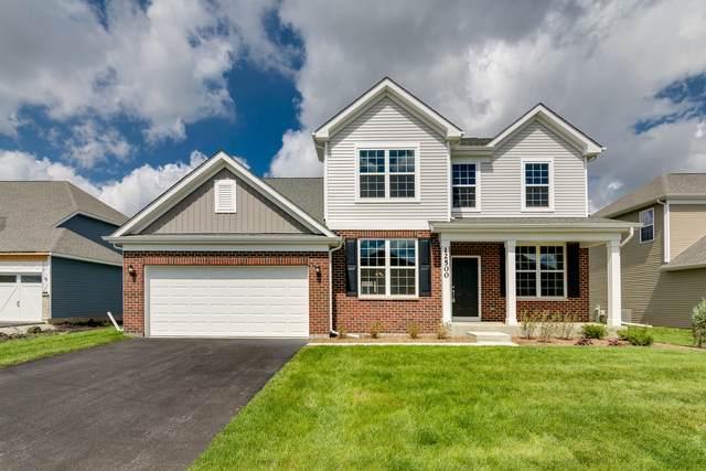 27026 Rustic Wood Lane, Plainfield, IL 60585 (MLS #11254817) :: O'Neil Property Group