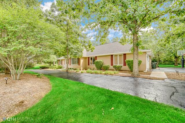 864 Saint Andrews Way, Frankfort, IL 60423 (MLS #11254909) :: The Wexler Group at Keller Williams Preferred Realty