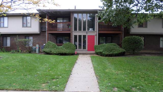 801 Garden Circle #1, Streamwood, IL 60107 (MLS #11255131) :: The Wexler Group at Keller Williams Preferred Realty