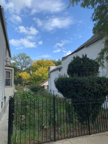 1839 N Albany Avenue, Chicago, IL 60647 (MLS #11255169) :: The Wexler Group at Keller Williams Preferred Realty