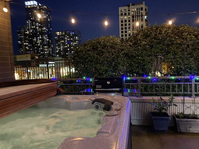 1155 S State Street C406, Chicago, IL 60605 (MLS #11255196) :: Littlefield Group