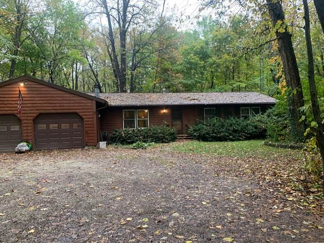 5343 W Pauling Road, Monee, IL 60449 (MLS #11255352) :: NextHome Select Realty