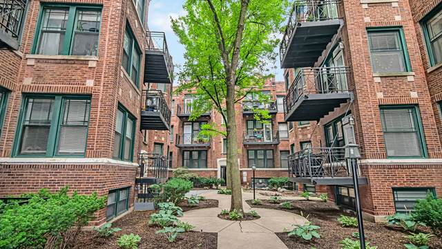 1142 W Pratt Boulevard 3N, Chicago, IL 60626 (MLS #11255418) :: The Wexler Group at Keller Williams Preferred Realty