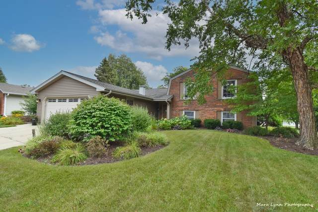 226 S Circle Avenue, Bloomingdale, IL 60108 (MLS #11255462) :: Littlefield Group