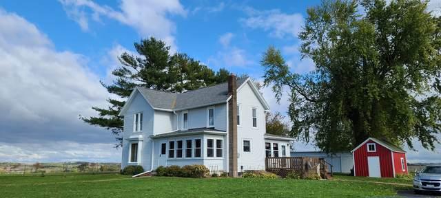 6791 N Leaf River Road, Leaf River, IL 61047 (MLS #11255508) :: The Wexler Group at Keller Williams Preferred Realty