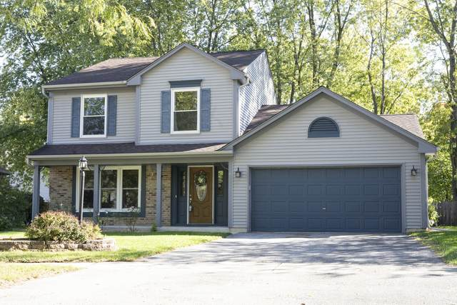 6 Hunter Court, Montgomery, IL 60538 (MLS #11255600) :: O'Neil Property Group