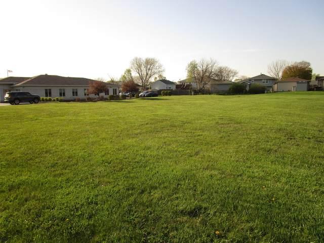 3001 Theodore Street, Joliet, IL 60435 (MLS #11255619) :: O'Neil Property Group