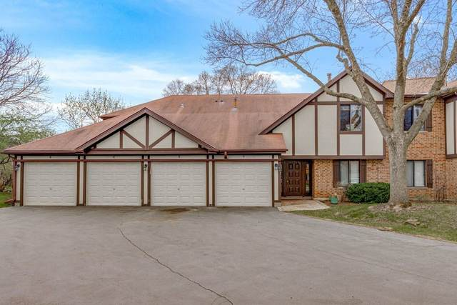 1009 E Kevin Court #2, Palatine, IL 60074 (MLS #11255630) :: Littlefield Group