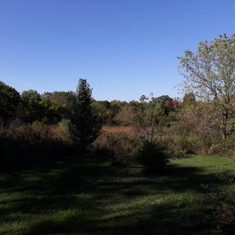 6295 Ravine Court, Yorkfield, IL 60560 (MLS #11255666) :: O'Neil Property Group