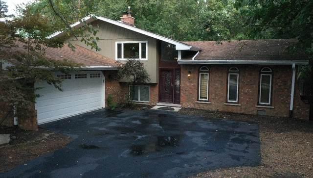 20123 Wolf Road, Mokena, IL 60448 (MLS #11255756) :: O'Neil Property Group