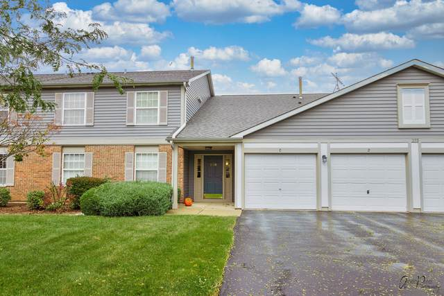 275 Crestview Drive D, Wauconda, IL 60084 (MLS #11255778) :: O'Neil Property Group
