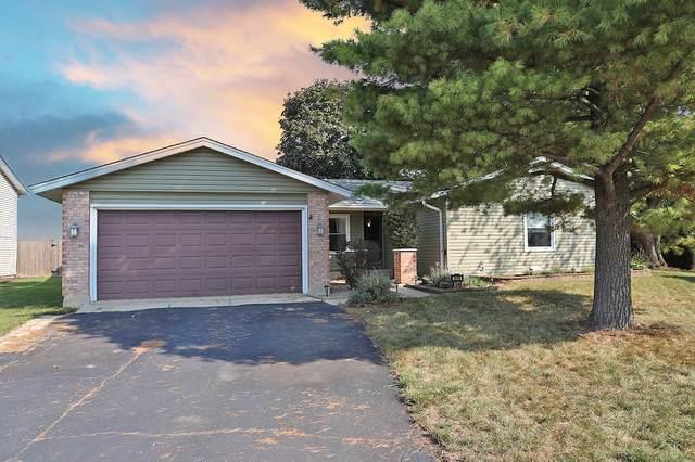 1516 Shepard Circle, Elk Grove Village, IL 60007 (MLS #11255867) :: O'Neil Property Group