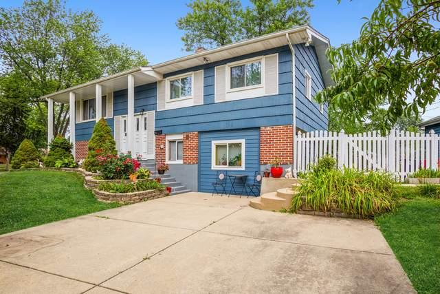 705 Audubon Street, Hoffman Estates, IL 60169 (MLS #11255883) :: The Wexler Group at Keller Williams Preferred Realty