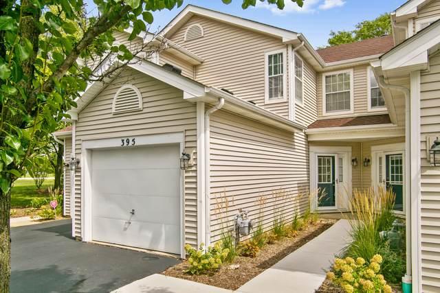 395 Hunterdon Court, Schaumburg, IL 60194 (MLS #11255897) :: John Lyons Real Estate
