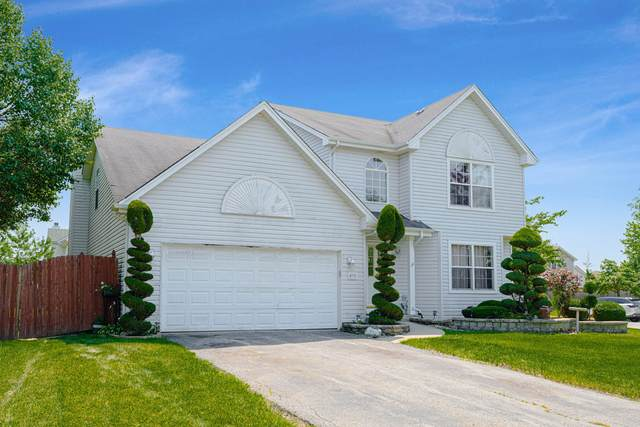 4711 W Lilac Avenue, Monee, IL 60449 (MLS #11256098) :: NextHome Select Realty