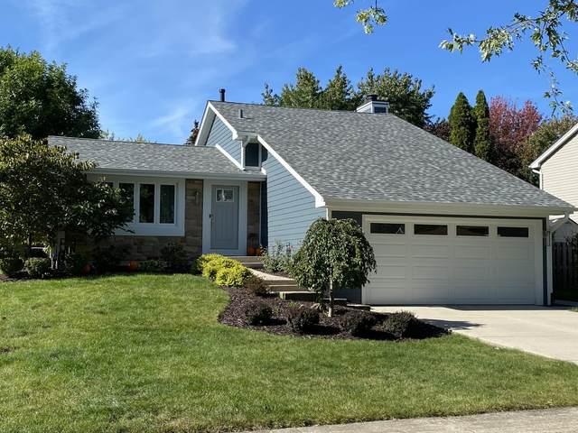 14352 Boulder Drive, Homer Glen, IL 60491 (MLS #11256104) :: NextHome Select Realty