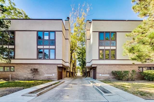 425 S Oak Park Avenue B, Oak Park, IL 60302 (MLS #11256385) :: Lux Home Chicago