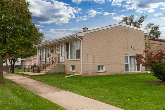 339 W Stone Avenue, Addison, IL 60101 (MLS #11256410) :: The Wexler Group at Keller Williams Preferred Realty