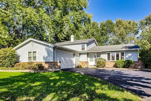 28W490 Leverenz Road, Naperville, IL 60564 (MLS #11256471) :: Lux Home Chicago