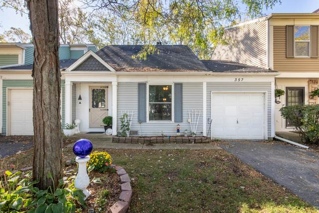 357 W Tanglewood Avenue, Palatine, IL 60067 (MLS #11256520) :: Littlefield Group