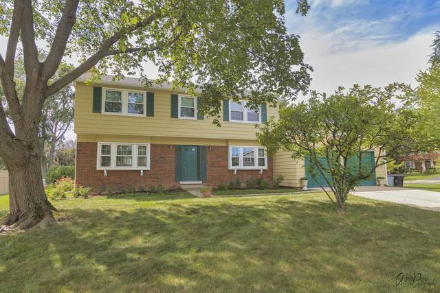 114 Timber Hill Road, Buffalo Grove, IL 60089 (MLS #11256950) :: Littlefield Group
