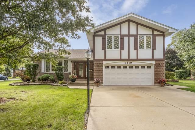1319 Elder Road, Homewood, IL 60430 (MLS #11257092) :: NextHome Select Realty