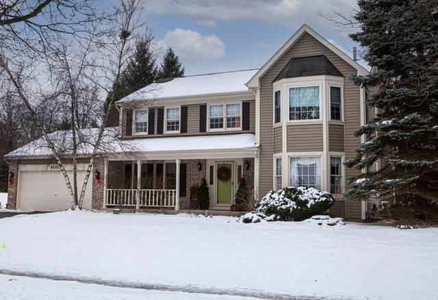 6683 Foxworth Lane, Gurnee, IL 60031 (MLS #10820449) :: Janet Jurich