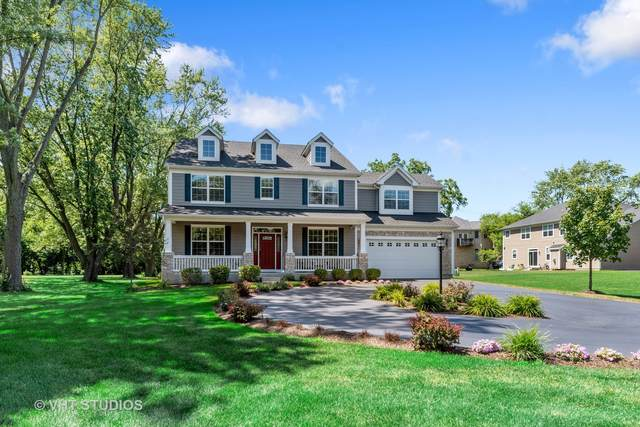 612 S Wilke Road, Palatine, IL 60067 (MLS #10923057) :: Helen Oliveri Real Estate
