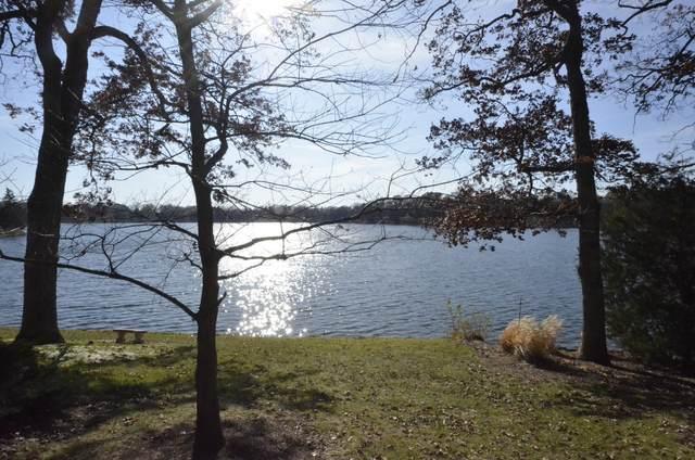 294 W Mallard A, Lake Barrington, IL 60010 (MLS #10927427) :: The Spaniak Team