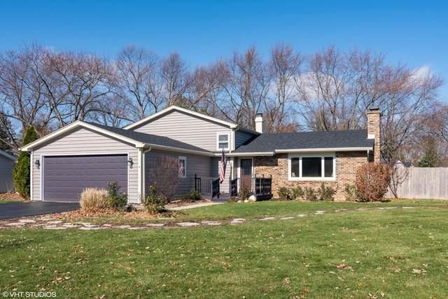 28W516 Leverenz Road, Naperville, IL 60564 (MLS #10933127) :: John Lyons Real Estate