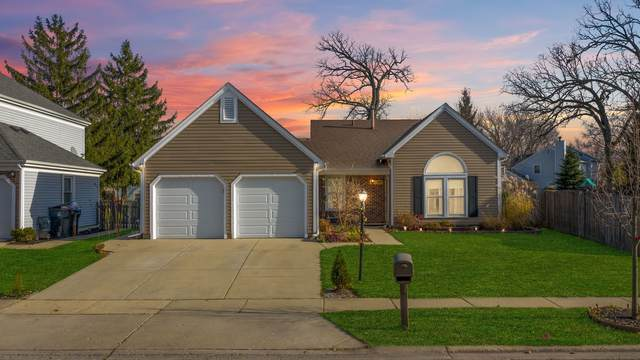 39 Washington Avenue, Streamwood, IL 60107 (MLS #10935189) :: John Lyons Real Estate
