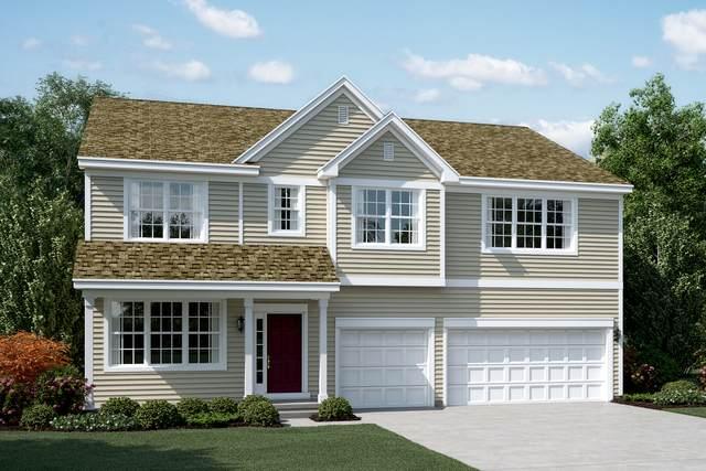 408 Fanad Court, Oswego, IL 60543 (MLS #10935419) :: Janet Jurich