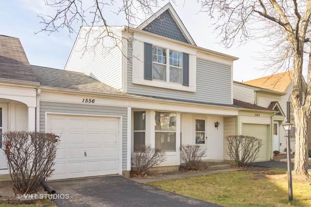 1556 N Gatewood Avenue, Palatine, IL 60067 (MLS #10937126) :: Property Consultants Realty