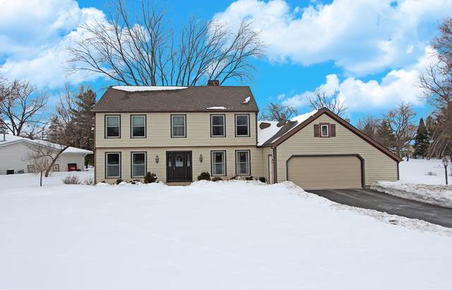 25174 W Ivanhoe Road, Wauconda, IL 60084 (MLS #10937427) :: The Dena Furlow Team - Keller Williams Realty