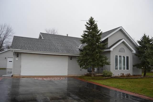 217 David Drive, Braceville, IL 60407 (MLS #10941509) :: Jacqui Miller Homes