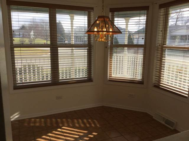 902 Shetland Court, Grayslake, IL 60030 (MLS #10944117) :: Jacqui Miller Homes