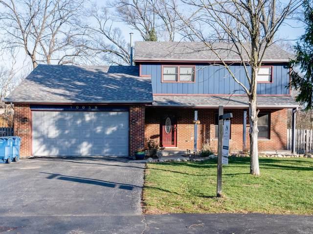 10059 S 81st Avenue, Palos Hills, IL 60465 (MLS #10946488) :: BN Homes Group