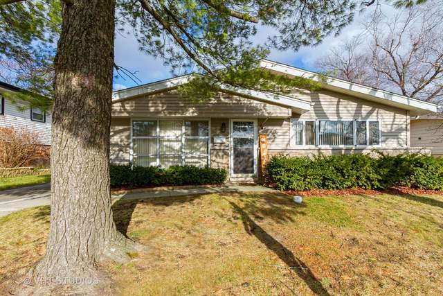 218 Kentucky Street, Park Forest, IL 60466 (MLS #10946803) :: Schoon Family Group